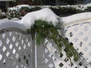Pine garlands covered in snow