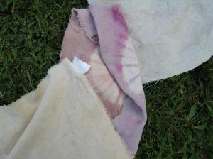 persimmon dye dip1